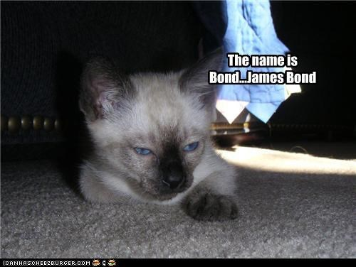 The name is Bond...James Bond