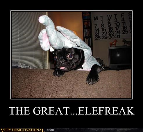 THE GREAT...ELEFREAK