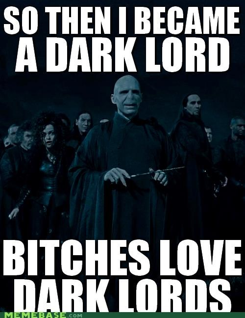 dark lord,Harry Potter,Memes,voldemort,yes we say the b word in pictures but censor it in text