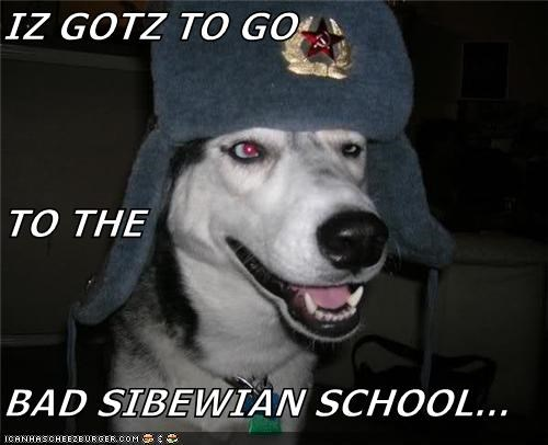 IZ GOTZ TO GO TO THE BAD SIBEWIAN SCHOOL...