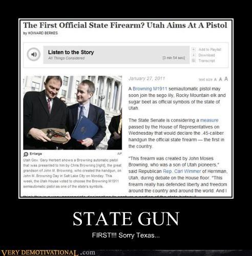 STATE GUN