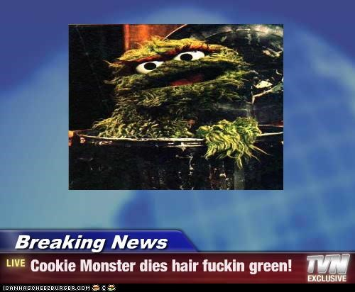 Breaking News - Cookie Monster dies hair fuckin green!