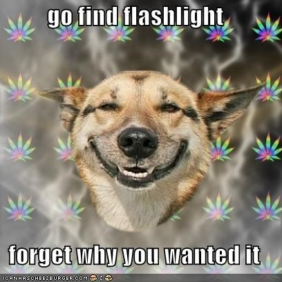 go find flashlight  forget why you wanted it