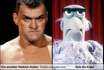Pro Wrestler Vladimir Koslov Totally Looks Like Sam the Eagle
