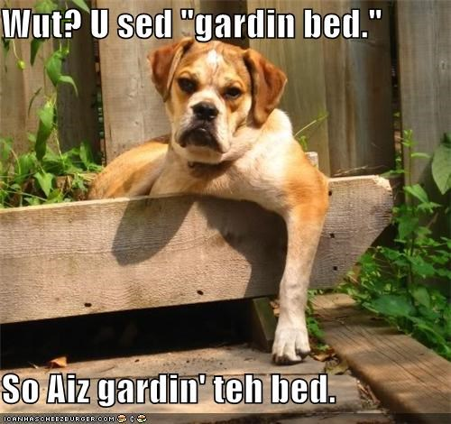 "Wut? U sed ""gardin bed.""  So Aiz gardin' teh bed."