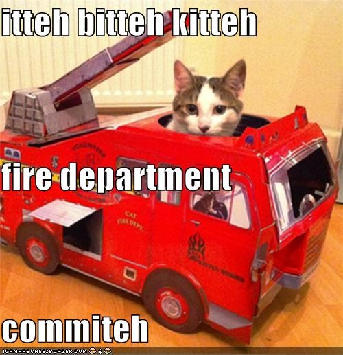 itteh bitteh kitteh fire department commiteh