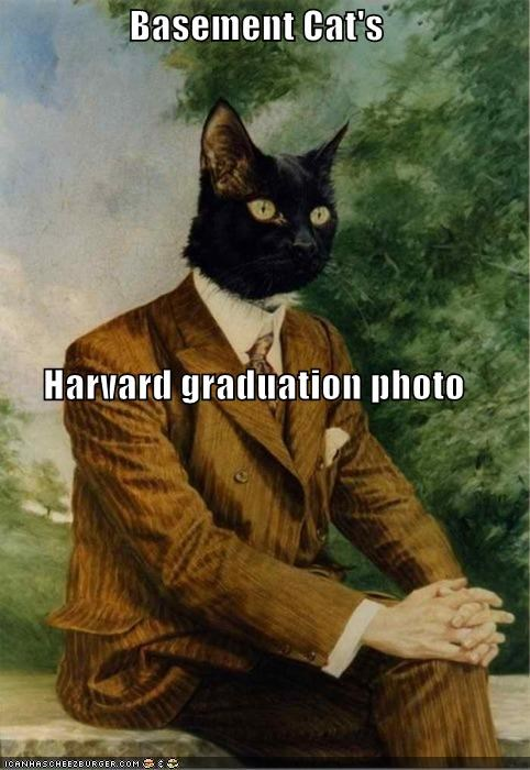 animal,art,basement cat,fake,funny,meme,painting,shoop