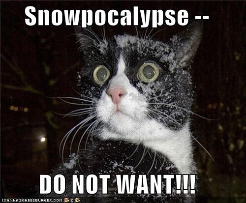 Snowpocalypse --  DO NOT WANT!!!