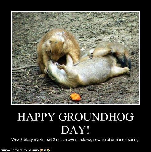 celebration,groundhog,groundhog day,holiday,KISS,making out,shadows,spring,winter