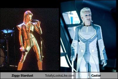 Ziggy Stardust Totally Looks Like Castor