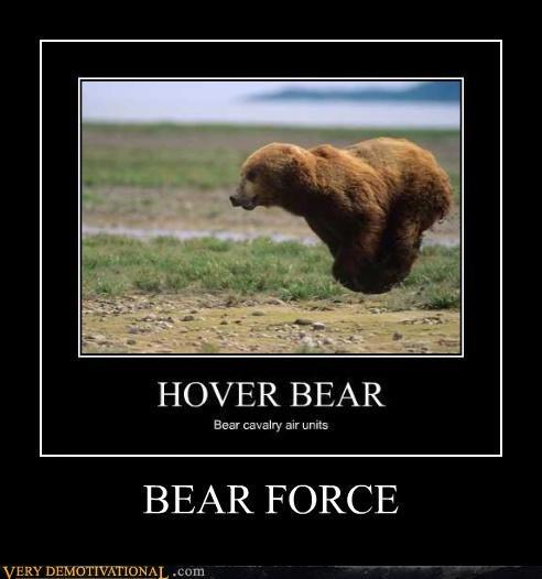 puns,hover bear,air force