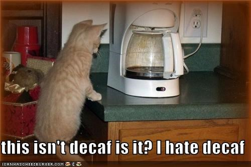 this isn't decaf is it? I hate decaf