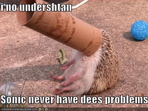 i no undershtan  Sonic never have dees problems