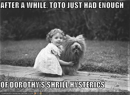Toto Could Only Take So Much...