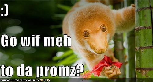 :) Go wif meh      to da promz?