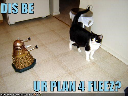 DIS BE  UR PLAN 4 FLEEZ?