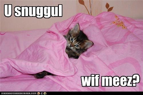 Snugguls