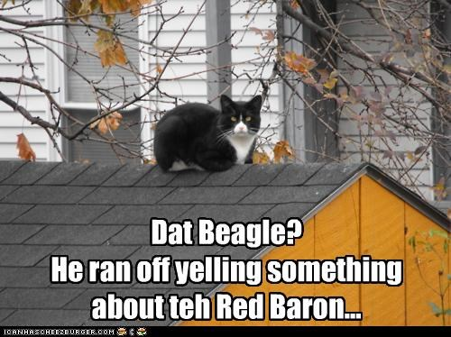 beagle,caption,captioned,cat,dogs,doghouse,peanuts,perching,red baron,roof,sitting,snoopy