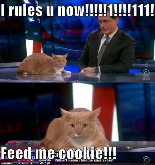 I rules u now!!!!!1!!!!111!!!!!  Feed me cookie!!!