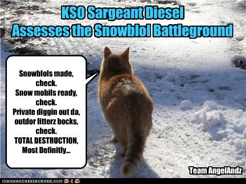 KSO Sargeant Diesel Assesses the Snowblol Battleground