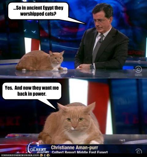 animals,Cats,christianne aman-purr,egypt,Hosni Mubarak,lolcats,power,stephen colbert