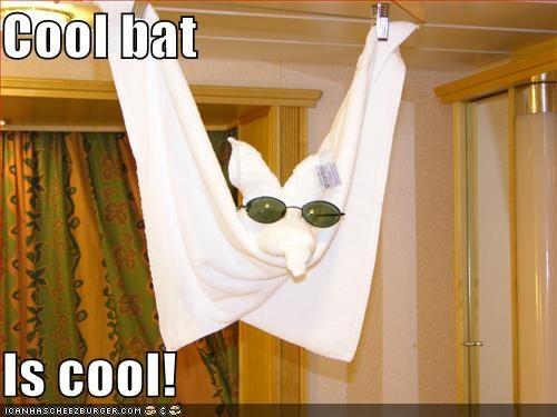 Cool bat  Is cool!