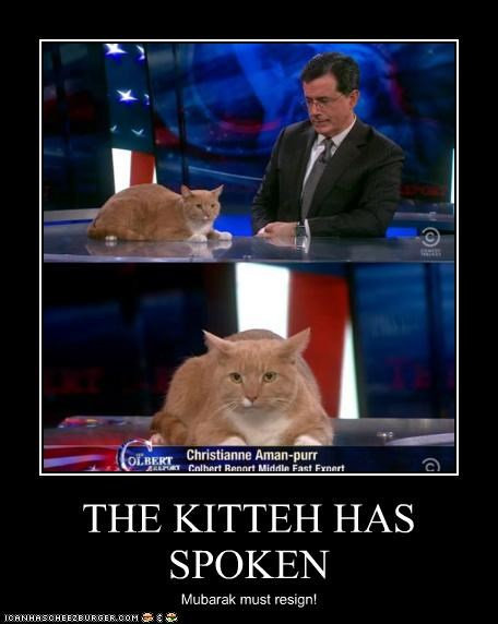 THE KITTEH HAS SPOKEN