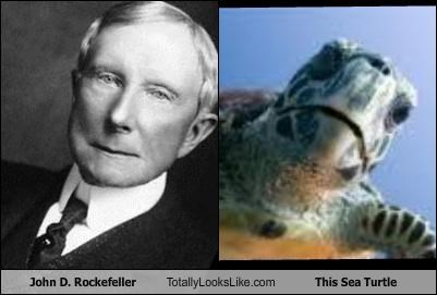 John D. Rockefeller Totally Looks Like This Sea Turtle