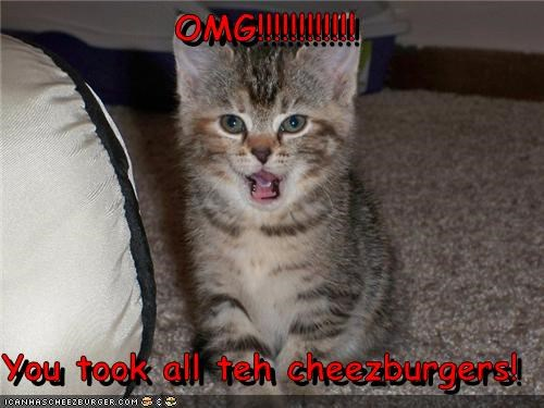 OMG!!!!!!!!!!!!  You took all teh cheezburgers!