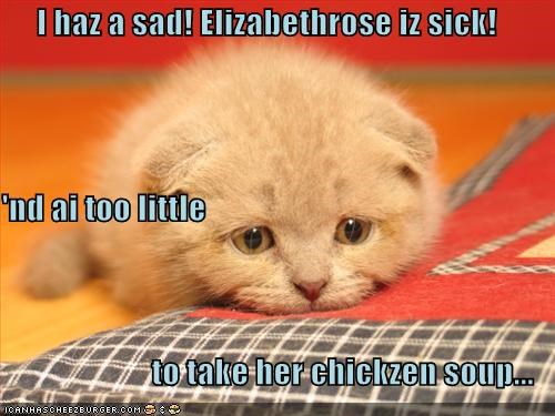 I haz a sad! Elizabethrose iz sick! 'nd ai too little  to take her chickzen soup...