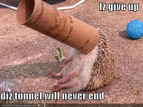 Iz give up  diz tunnel will never end