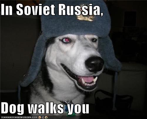 In Soviet Russia,  Dog walks you