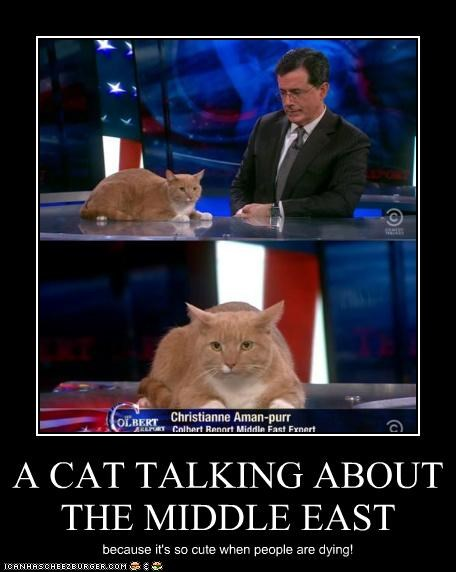 A CAT TALKING ABOUT THE MIDDLE EAST