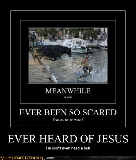 jesus,water,run,bull