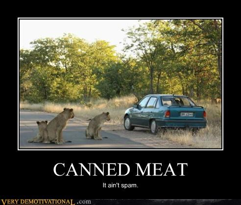 CANNED MEAT