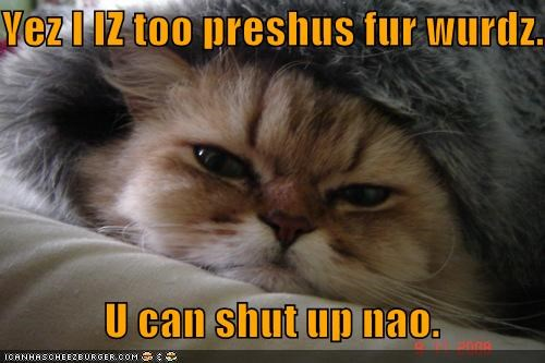 agreed,agreement,caption,captioned,cat,Precious,request,sarcasm,shut up,too,words