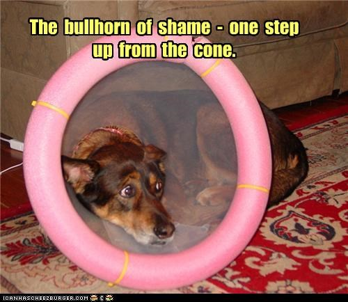 The  bullhorn  of  shame  -  one  step  up  from  the  cone.