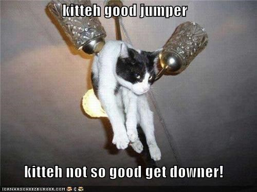 kitteh good jumper  kitteh not so good get downer!