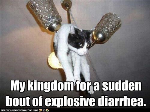 My kingdom for a sudden bout of explosive diarrhea.