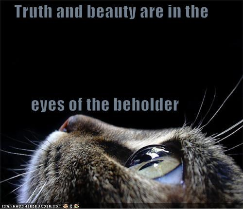 Truth and beauty are in the          eyes of the beholder