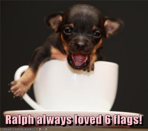 Ralph always loved 6 flags!