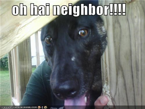 oh hai neighbor!!!!