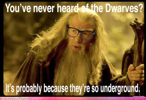 Beard. Glasses. Attitude. Yep, It's Hipster Gandalf