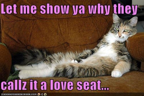 appropriate,caption,captioned,cat,demonstrating,demonstration,Hall of Fame,literalism,lounging,love,love seat,name,offer,seat,show,showing,smarmy,title