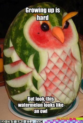 emolulz,growing up,hoot,Owl,toaster sequel,watermelon