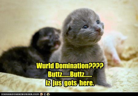 Wurld Domination???? Buttz......Buttz...... iz  jus  gots  here.
