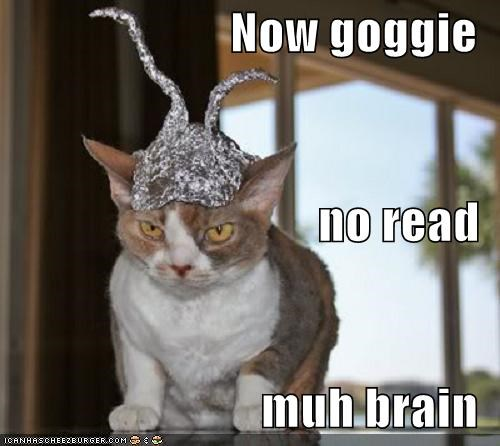 Now goggie no read muh brain