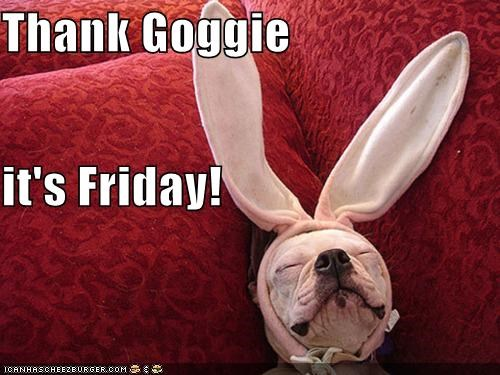 bulldog,bunny,bunny ears,costumed,dressed up,mixed breed,sleeping,thank-goggie-its-friday