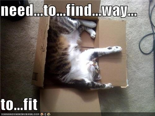 need...to...find...way...  to...fit