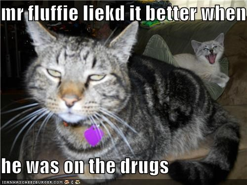 mr fluffie liekd it better when  he was on the drugs